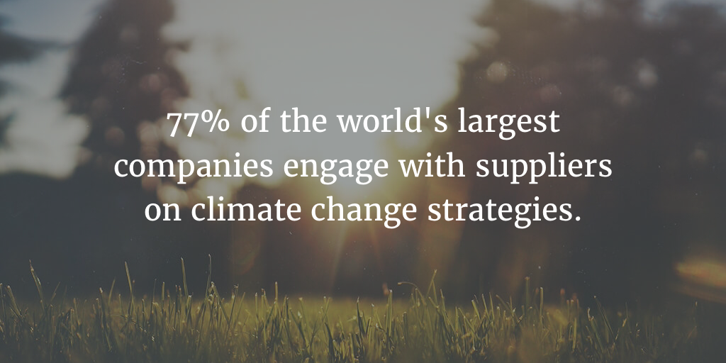 Rethinking Procurement to Reduce Your Carbon Footprint