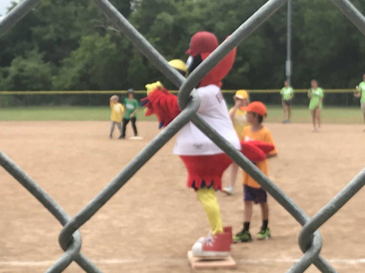 OE at Mike Bush's Fantasy Baseball Camp